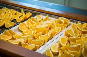 The food-oranges