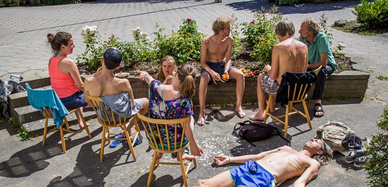 Socializing-in the sun
