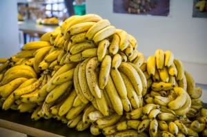 The food-bananas