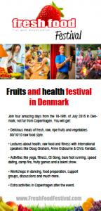 Aflang festival flyer 2015